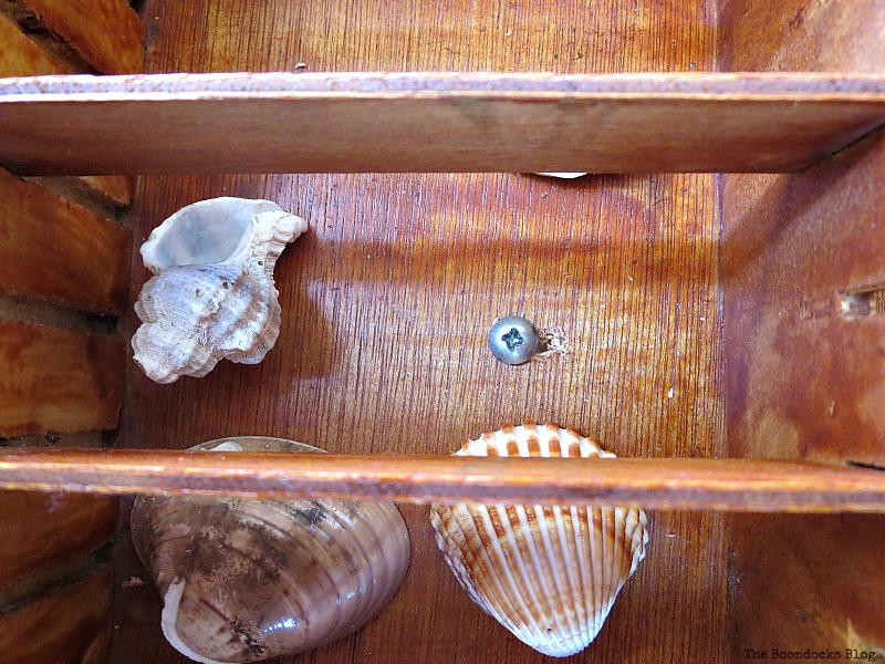 Adding the shells inside, The Showcase Table www.theboondocksblog.com