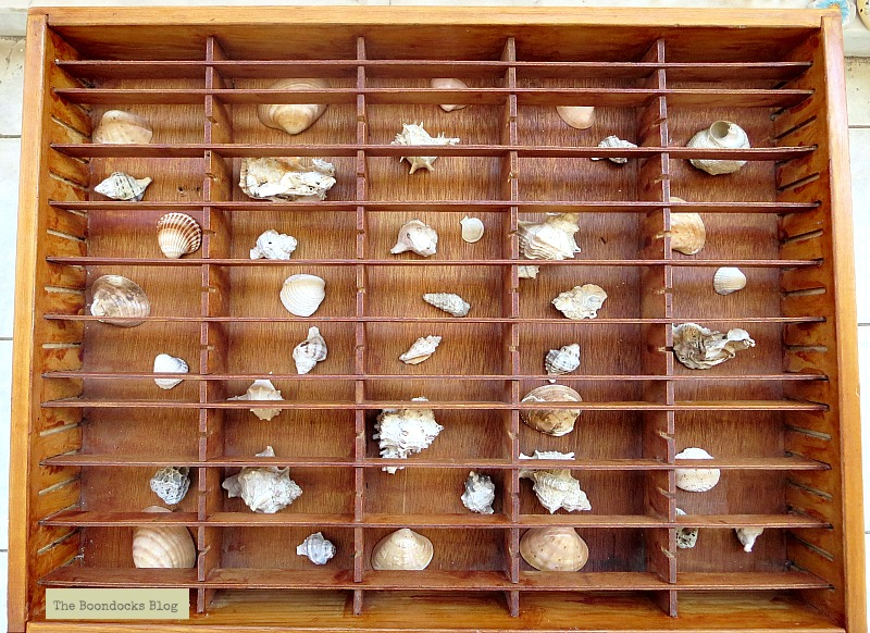 the cassette holder filled with shells, The Showcase Table www.theboondocksblog.com
