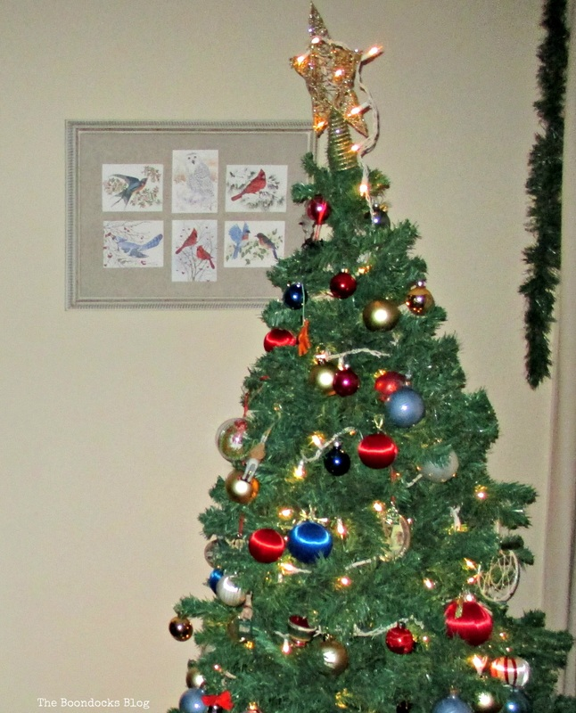 Picture Frame, Birds of Christmas - The Boondocks Blog