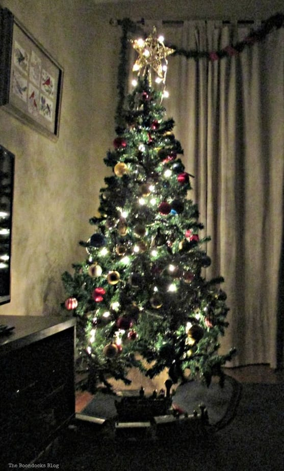 The Birds of Christmas and Tree - The Boondocks Blog