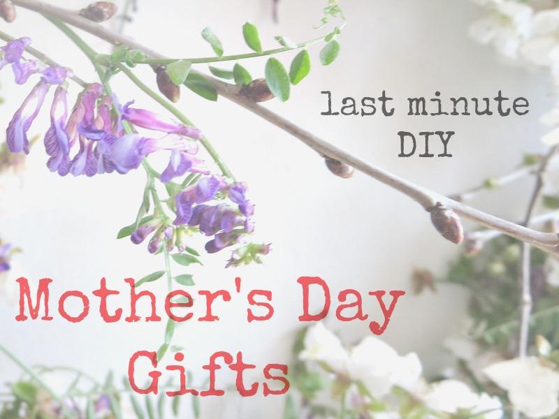 Last Minute DIY Mother's Day Gifts www.theboondocksblog.com