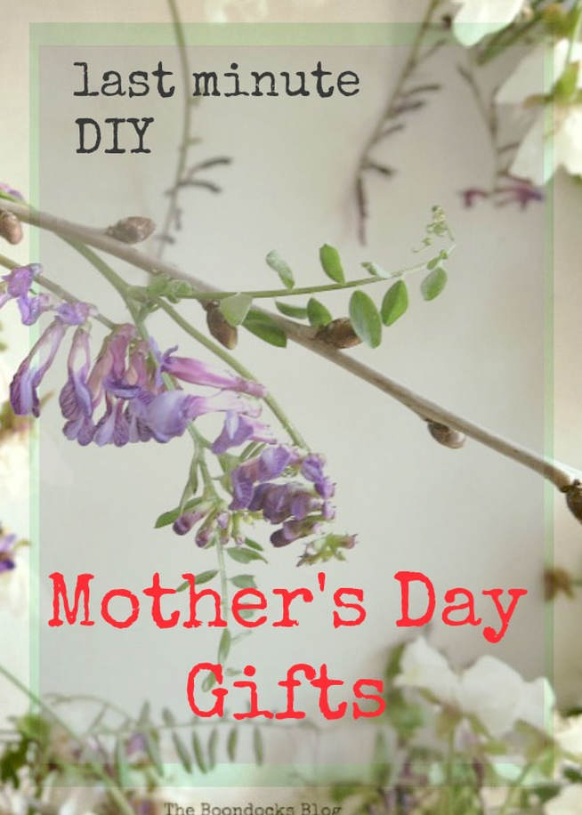 A collection of last minute gift ideas for Mothers Day #GiftIdeas #MothersDay #DIYprojects #Makeyourowngift #totes #tincans #repurposes #easycaftideas Last Minute DIY Mother's Day Gifts www.theboondocksblog.com