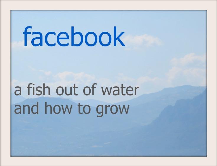 Facebook, a fish out of water and how to grow www.theboondocksblog.com