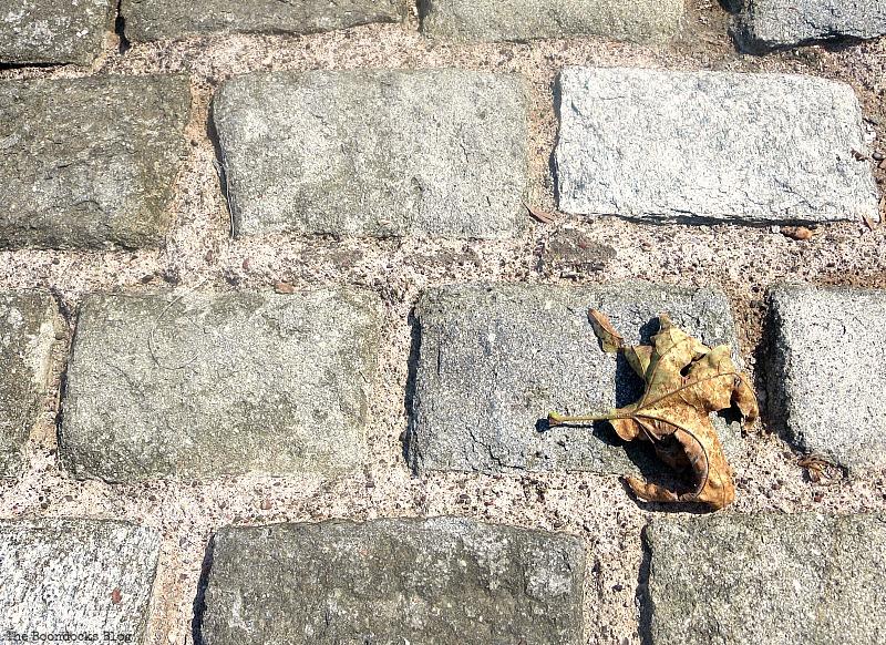 a leaf on the ground, Easy Fall Wreath Int'l Bloggers Club www.theboondocksblog.com