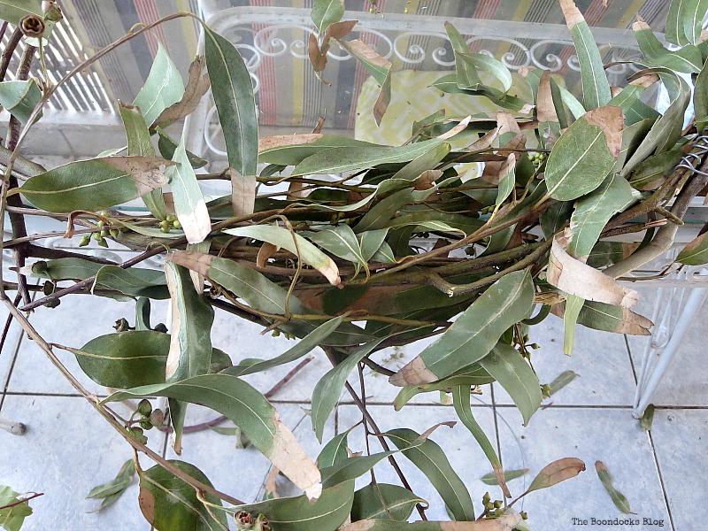 Eucalyptus branches, Easy Fall Wreath Int'l Bloggers Club www.theboondocksblog.com