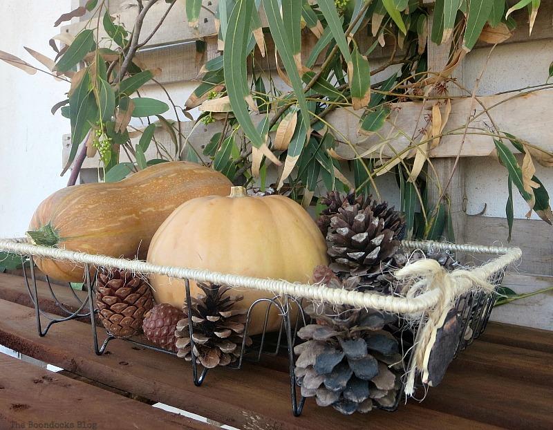 Vignette in wire dish rack, Easy DIY Fall Eucalyptus Vignette www.theboondocksblog.com