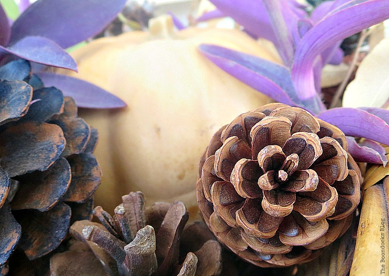 Beautiful pinecones, Easy DIY Fall Eucalyptus Vignette www.theboondocksblog.com