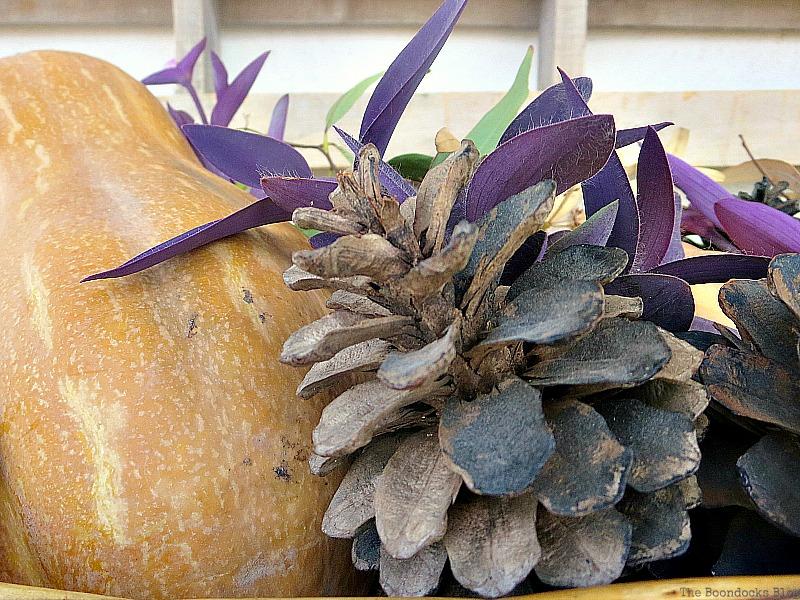 Close up of pinecone, Easy DIY Fall Eucalyptus Vignette www.theboondocksblog.com