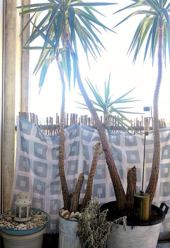 In between the plants, A Breen Vintage Coffee Roaster Repurpose www.theboondocksblog.com