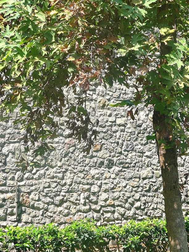 wall with foliage, Old Stone Buildings on the Waterfront www.theboondocksblog.com