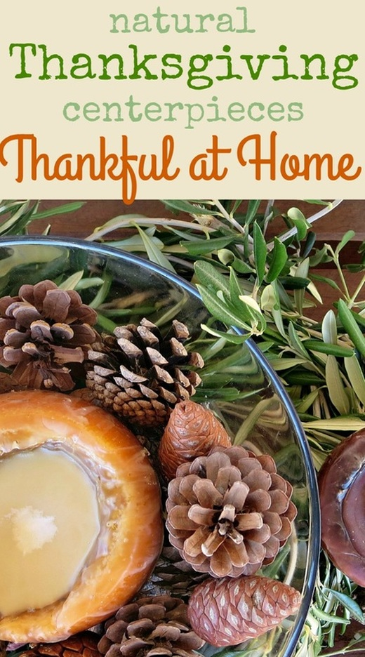 How to make two easy and natural centerpieces using nature and at home products, #thanksgiving #thanksgivingcenterpiece #naturalcenterpiece #nature #natureathome #thankfulathome #woodcenterpiece Natural Thanksgiving centerpieces, Thankful at Home www.theboondocksblog.com