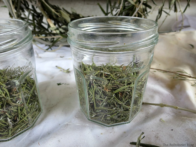 Rosemary leaves in jars, Easy Green Christmas Centerpieces www.theboondocksblog.com