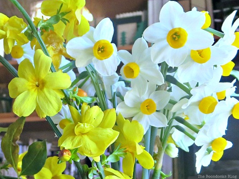 Narcissus flowers, Repurposed Cordial Glasses and Saucers for a Spring Craft Pedestal, www.theboondocksblog.com