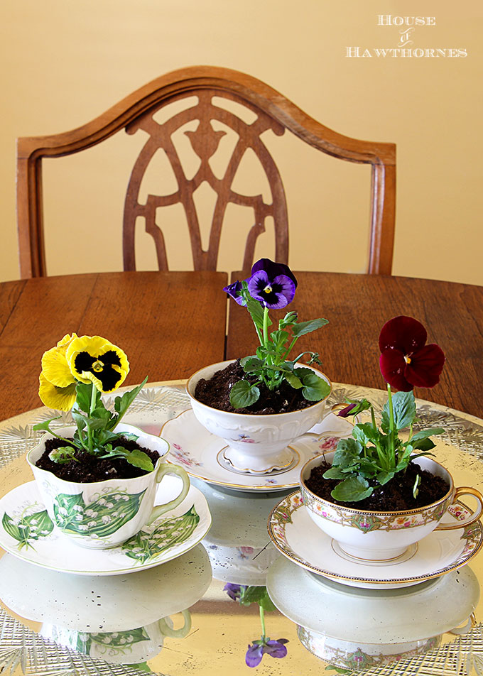 flowers planted in cups and saucers, House of Hawthornes, How to Pamper Mom for Mother's Day with DIY Gift Ideas www.theboondocksblog.com