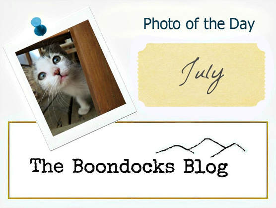 Photo of the Day Logo, Photo of the Day July 2017 www.theboondocksblog.com