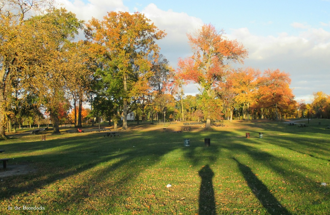 Shadows in the park, My Obligatory Post in Praise of Autumn www.theboondocksblog.com