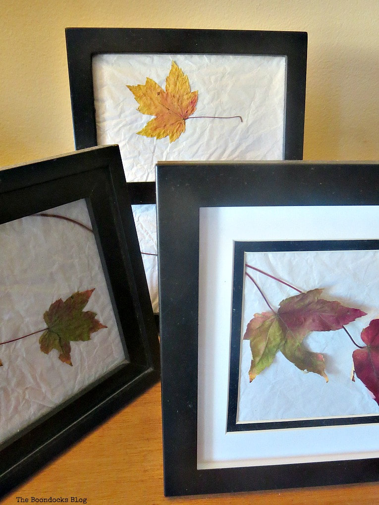 Close up of fall leaves inside black picture frames, How to Easily add Fall in your home www.theboondocksblog.com