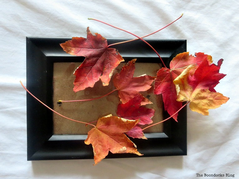 Picture frame and leaves, How to Easily add Fall in your home www.theboondocksblog.com