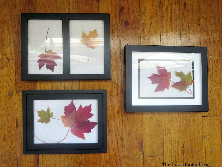 leaves placed inside picture frames with paper as background, How to Easily add Fall in your home www.theboondocksblog.com