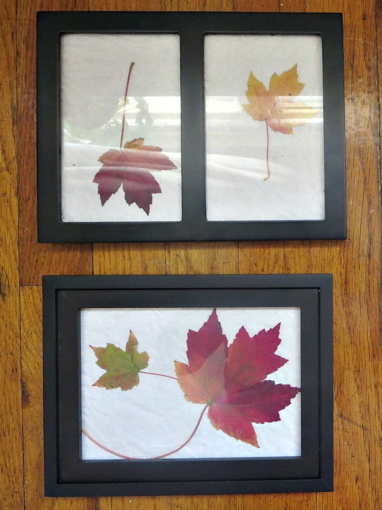 leaves placed inside of picture frames, How to Easily add Fall in your home www.theboondocksblog.com