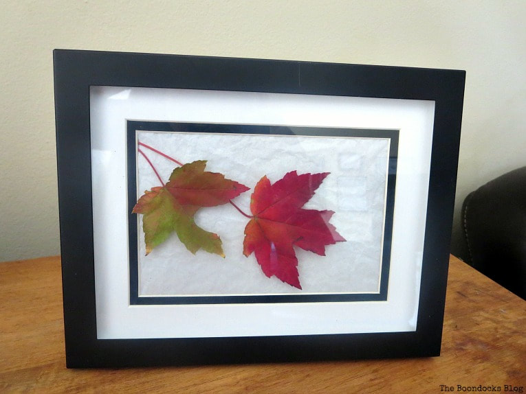 black frame with white matte and leaves inside, How to Easily add Fall in your home www.theboondocksblog.com