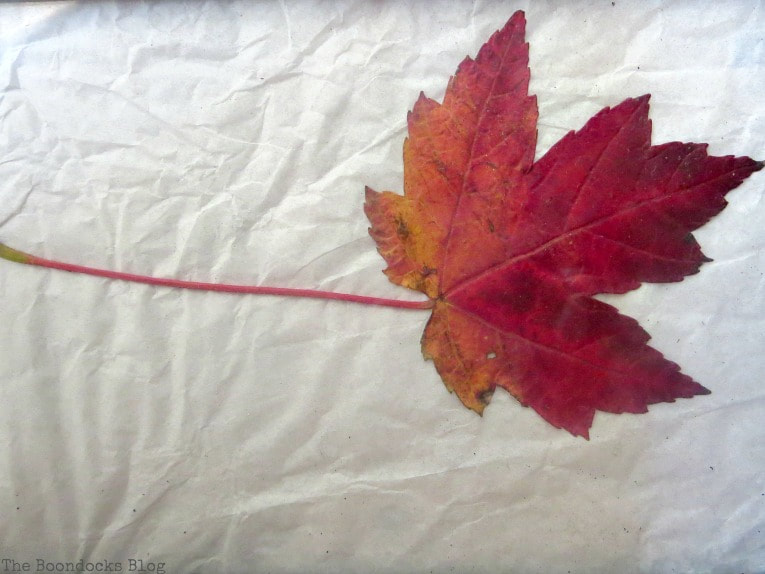 placing the leaf on top of paper, How to Easily add Fall in your home www.theboondocksblog.com