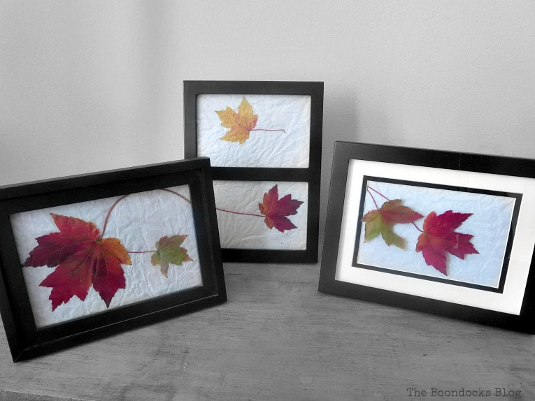 Fall leaves displayed inside picture frames, How to Easily add Fall in your home www.theboondocksblog.com