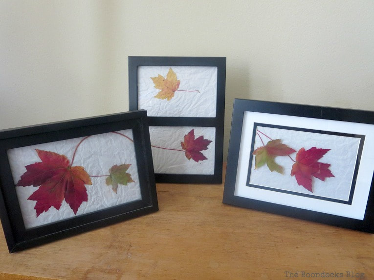 three picture frames with leaves as art, How to Easily add Fall in your home www.theboondocksblog.com