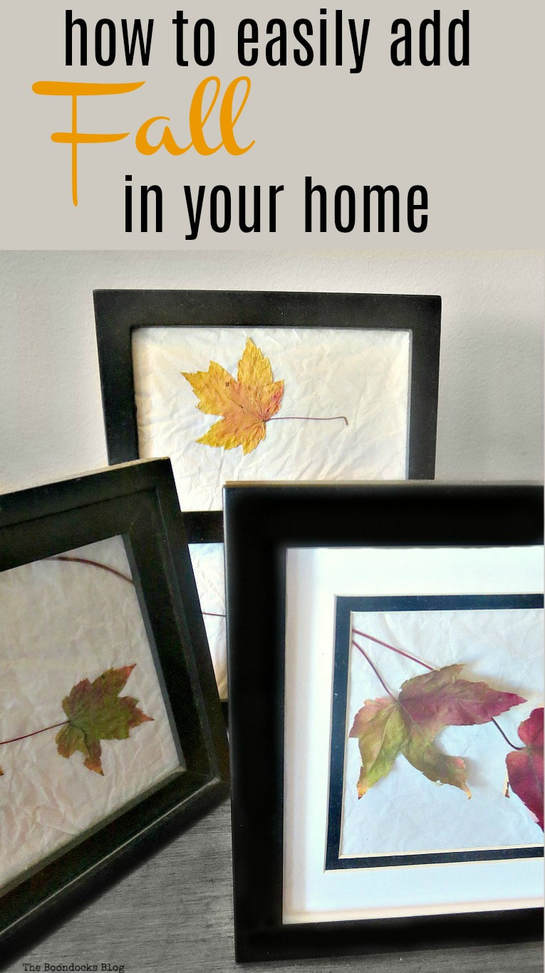 You can bring fall into your home with this easy art project. Just add the leaves inside picture frames in groups and you have instant art, and a way to keep the fall colors at home, #falldecor #easyfalldecor #simplefallcraft #fallart #leafart #fallframedleaves How to Easily add Fall in your home www.theboondocksblog.com