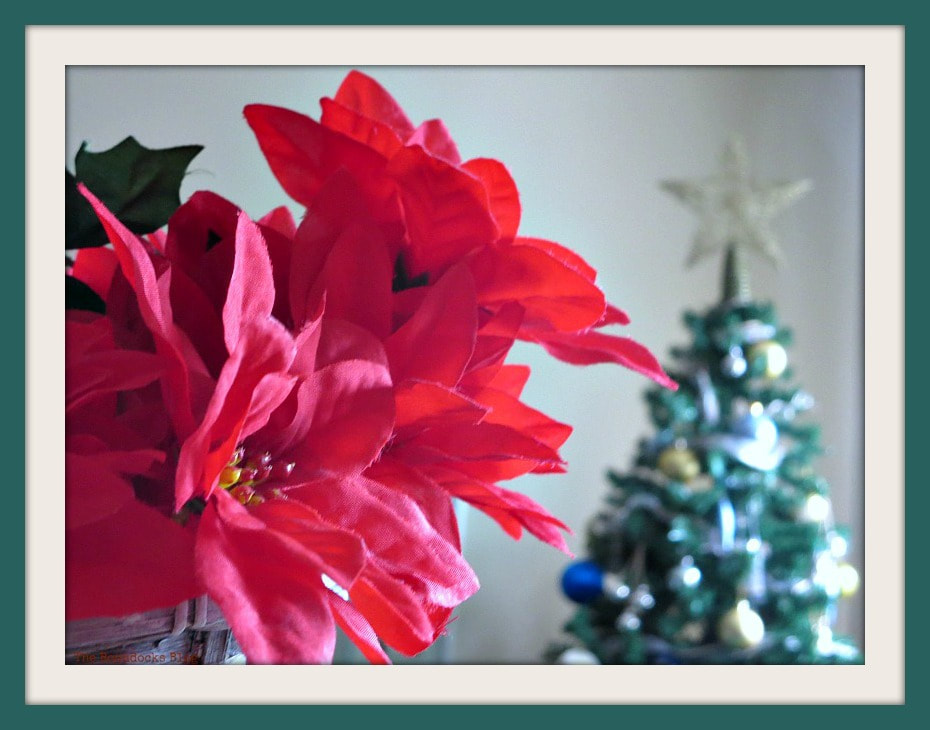 Merry Christmas card with poinsettia and tree in background, www.theboondocksblog.com