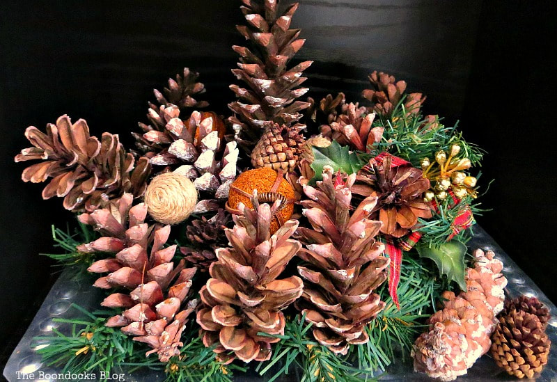 Pine cone vignette, Photos of the Day for November and December www.theboondocksblog.com