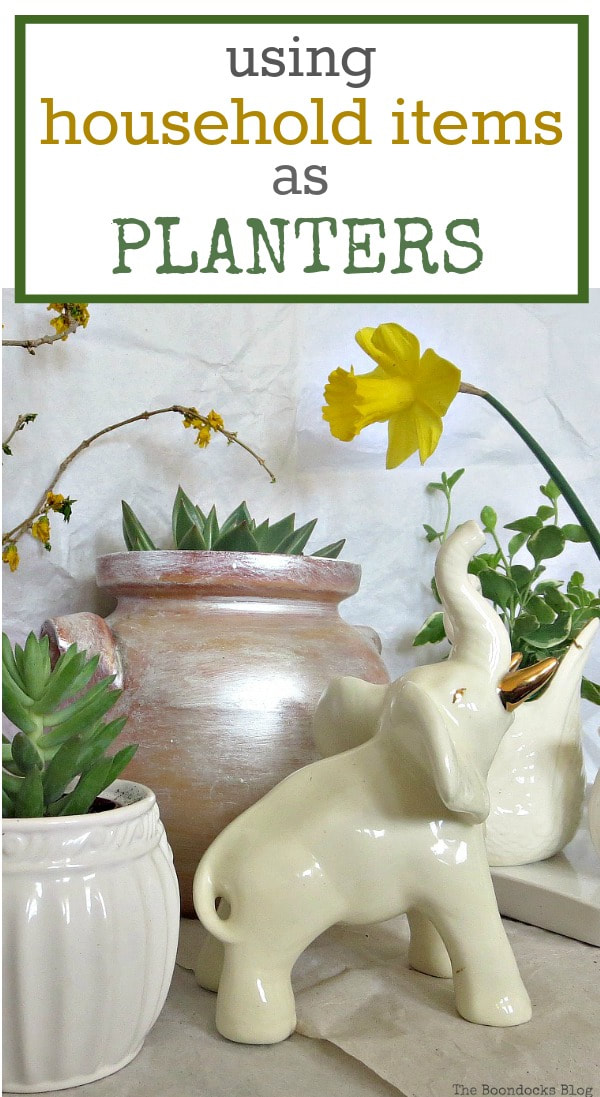 A plant vignette created using re-purposed household items , #repurposedhouseholditems #planterideas #plantervignette #gardeningideas How to Re-Purpose Household Items as Planters, theboondocksblog
