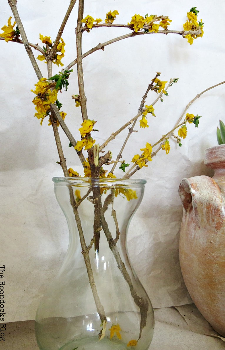 dried flower branches in glass vase, How to Re-Purpose Household Items as Planters, theboondocksblog