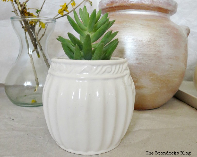 Succulent planted in sugar bowl. How to Re-Purpose Household Items as Planters, theboondocksblog