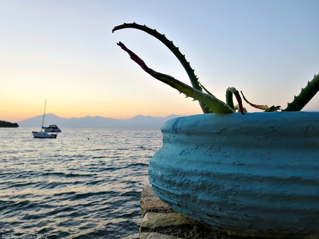 aloe vera plant in planter in front of the beach with boats, A different look at the beach in Beautiful Greece www.theboondocksblog.com