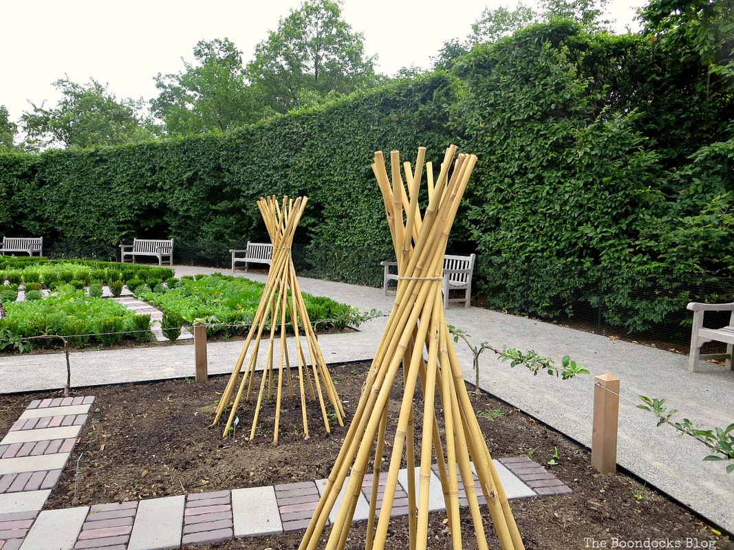 Vegetable garden, The Greatest Botanical Garden in the World, www.theboondocksblog.com