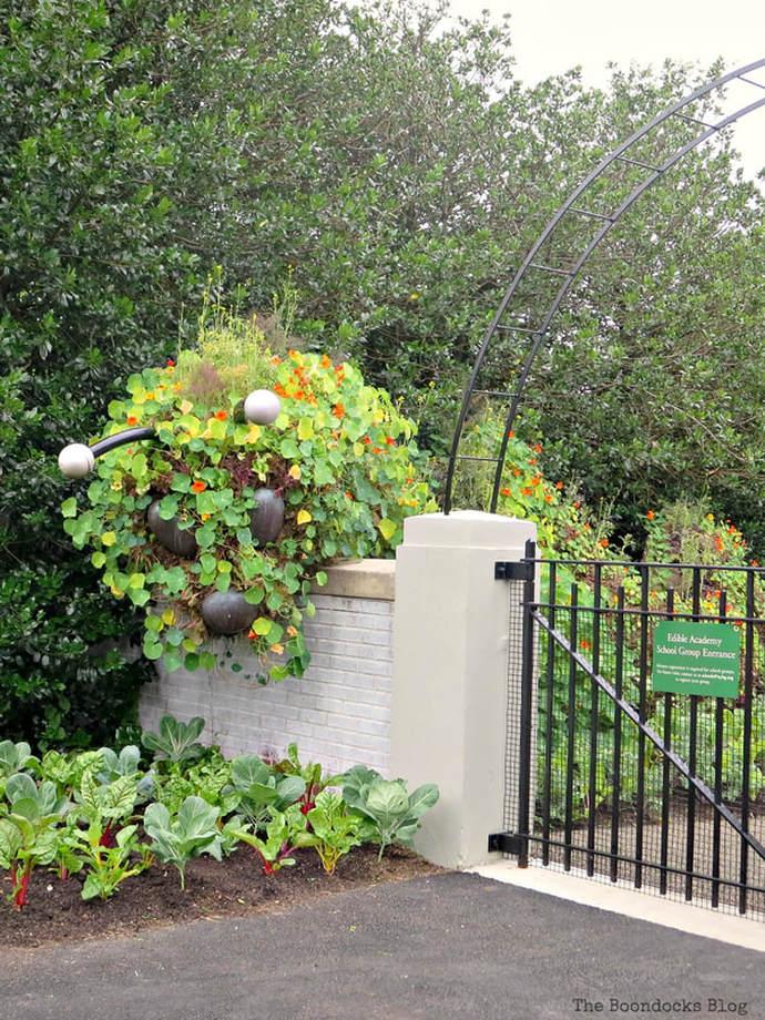 living green caterpillar, The Greatest Botanical Garden in the World, www.theboondocksblog.com