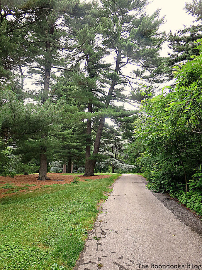a road with tall trees, The Greatest Botanical Garden in the World, www.theboondocksblog.com