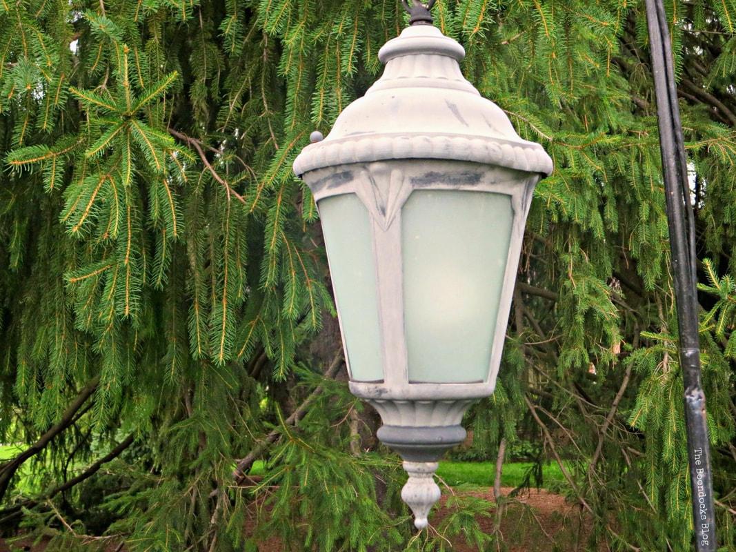 Street lamp, The Greatest Botanical Garden in the World, www.theboondocksblog.com