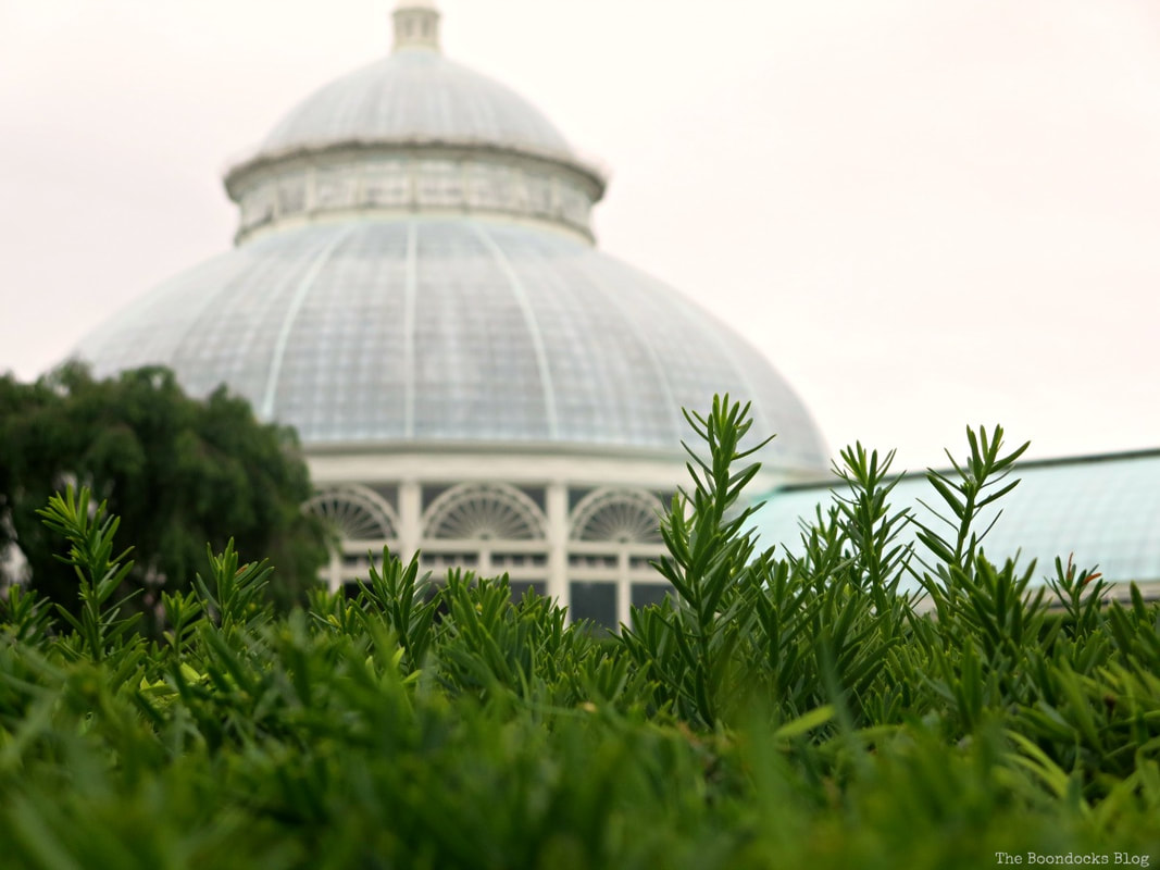 greenery with dome in background. A Visit to the Remarkable Enid A. Haupt Conservatory www.theboondocksblog.com