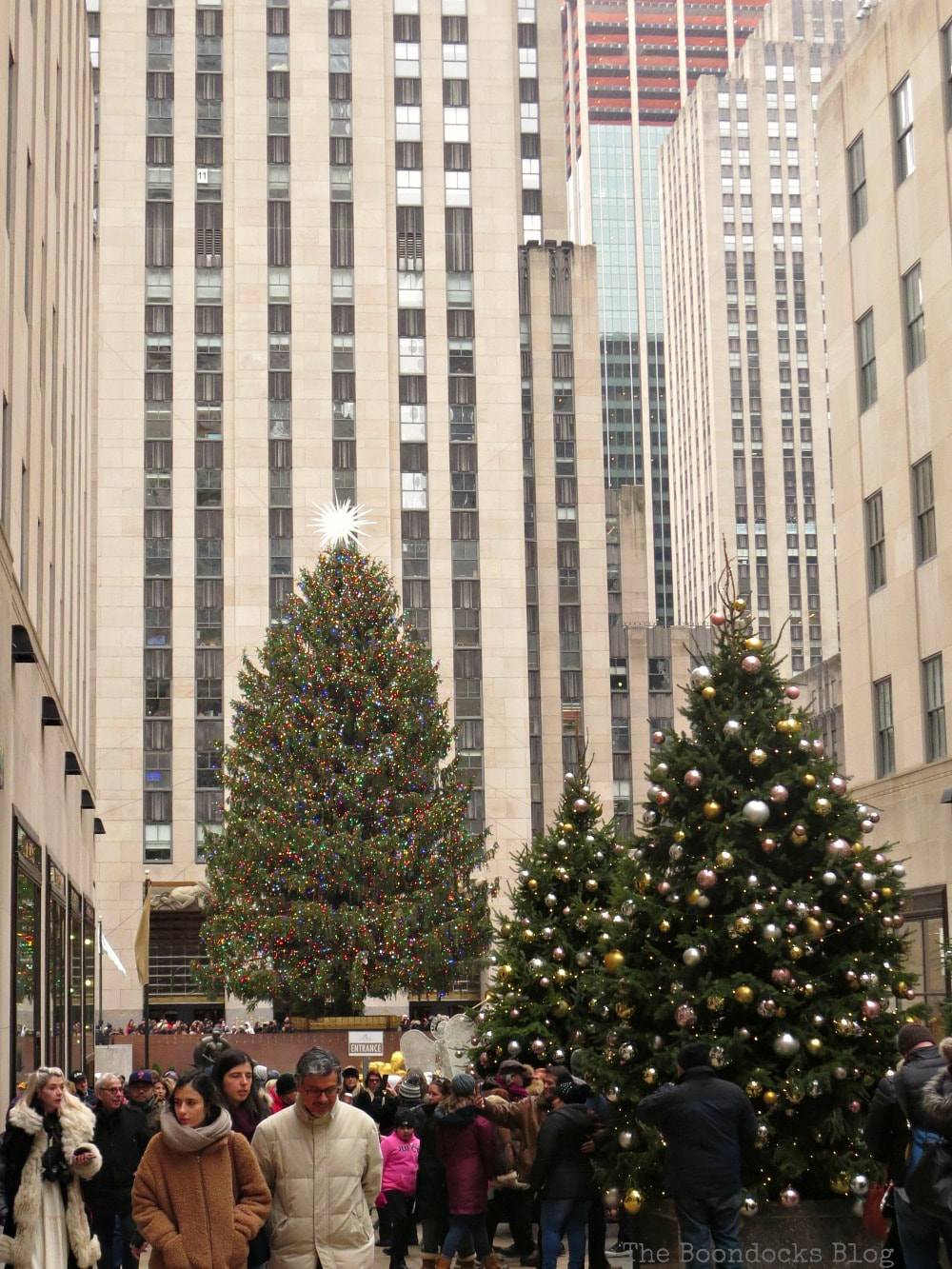 The big tree at Rockefeller Center, A Visit to the Spectacular Tree at Rockefeller Center www.theboondocksblog.com