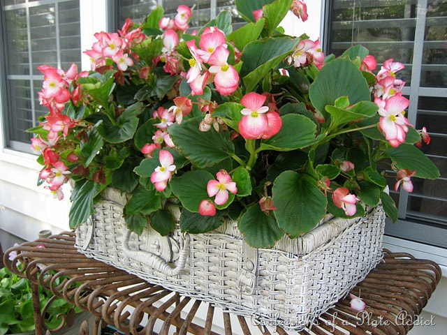 picnic basket planter, 35 Easy Spring Ideas to Inspire You www.theboondocksblog.com